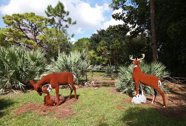 LEGO family of deer